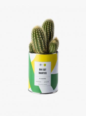 Cactus FC Nantes x AY Cactus