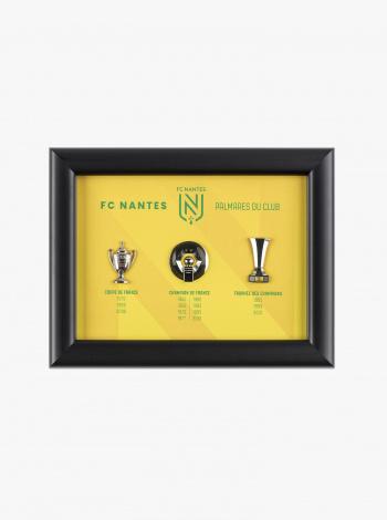 Cadre Palmares FC Nantes